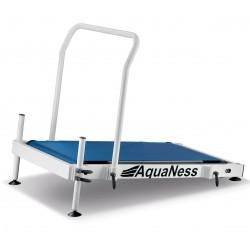 Carpet market and race Aquaness T1