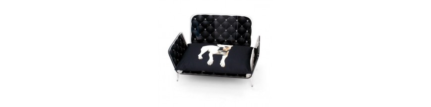 Furniture and accessories for dogs and cats